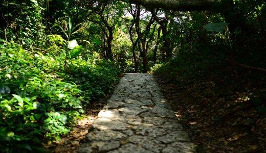 行儀かクセか、人生歩んで身から出たスキル | monoblog