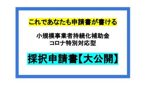 【採択申請書一挙公開!】小規模事業者持続化補助金コロナ特別対応型